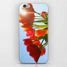 Tulip Flare iPhone & iPod Skin