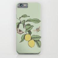 Lemons In Spring iPhone 6 Slim Case