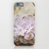 SOLO SUCCULENT  iPhone 6 Slim Case