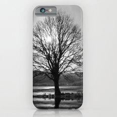 Lone Tree Slim Case iPhone 6s