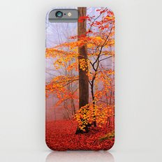 Autumn iPhone 6 Slim Case