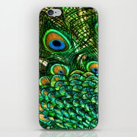 Peacocks Tail iPhone & iPod Skin