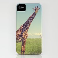 iPhone 4s & iPhone 4 Cases featuring Mr. Giraffe by Leah M. Gunther Photography & Design