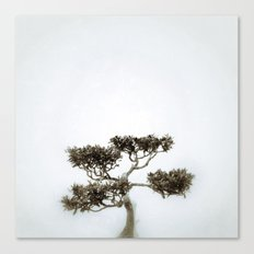 Tree #06 Canvas Print