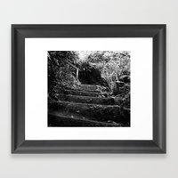 The Woodland Stair Framed Art Print