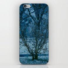 Blue Winter  iPhone & iPod Skin