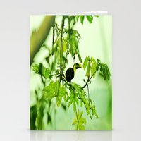 If I Can, Toucan Stationery Cards