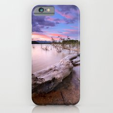 Old tree at the lake iPhone 6 Slim Case