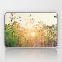 Sun Rising Laptop & iPad Skin