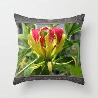 Gloriosa Rothschelidiana Throw Pillow