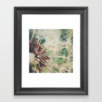 Dandelion    Spores Framed Art Print