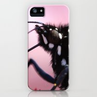 iPhone 5s & iPhone 5 Cases featuring Furry Fellow by kealaphotography