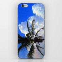 Florida Beauty iPhone & iPod Skin