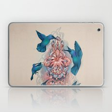 kolibri Laptop & iPad Skin