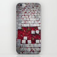 Fallen Petals iPhone & iPod Skin