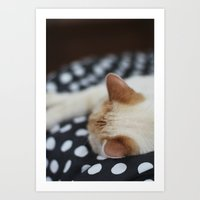 Dotty Kitty Art Print