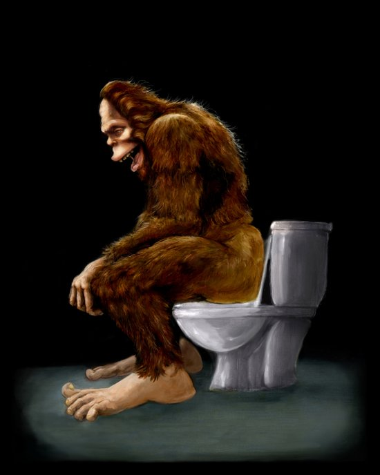 Bigfoot breaks into some Dude's Cabin and Totally takes a fat Dump in his toilet Canvas Print