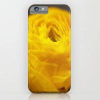 Golden Ranunculus Flowers iPhone 6 Slim Case