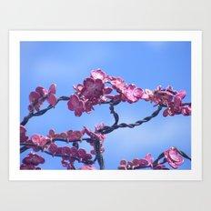 jason's dogwood pink Art Print
