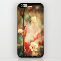 Little Pretty iPhone & iPod Skin