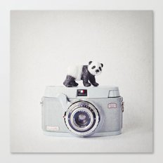 The Panda and The Ikonette Canvas Print