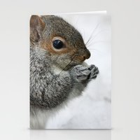 Snow Squirrel Stationery Cards