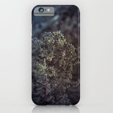 As the summer ends 2 iPhone 6s Slim Case