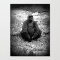 Gorilla Prime  Canvas Print