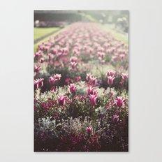 Paris Flowers Canvas Print