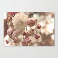 Springtime Flowers. Canvas Print
