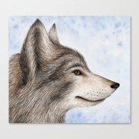 Eastern Wolf Canvas Print