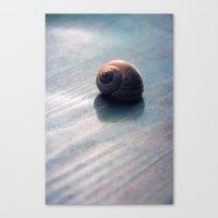 gusano Canvas Print