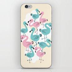 Flamingo Go Go iPhone & iPod Skin