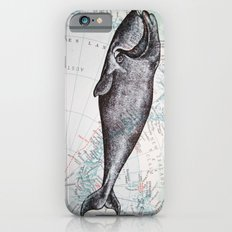 Whale in Antarctica iPhone 6 Slim Case