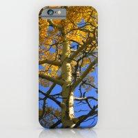 iPhone & iPod Case featuring Aspen by Jennifer L. Craft