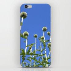 summer thistle IV iPhone & iPod Skin