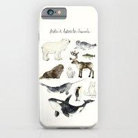 Arctic & Antarctic Animals iPhone 6 Slim Case