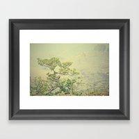 Caribbean Bonsai Framed Art Print