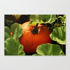 Waiting For Halloween Canvas Print