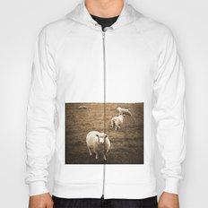 Sheep in a field Hoody