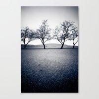 bruneau sand dunes. Canvas Print
