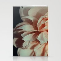 Wildeve Rose No. 1 Stationery Cards