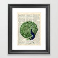 Vintage Peacock Framed Art Print