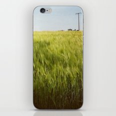 InLove iPhone & iPod Skin