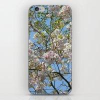 Spring day VI iPhone & iPod Skin