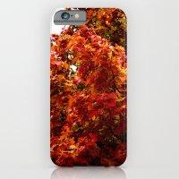 Autumn Red Tree iPhone 6 Slim Case