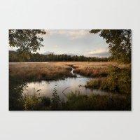 Oaks Bottom Wildlife Ref… Canvas Print