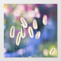 LET THERE BE COLOR Canvas Print