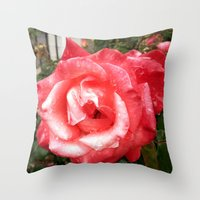Rainy Day Rose Throw Pillow