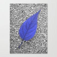 blue leaf IV Canvas Print
